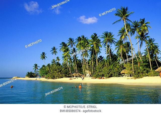 beach at Pigeon Point, Trinidad and Tobago, Tobago, Caribbean Sea