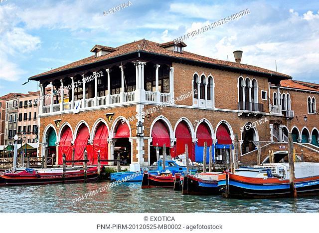 Boats moored in a canal, Venice, Veneto, Italy