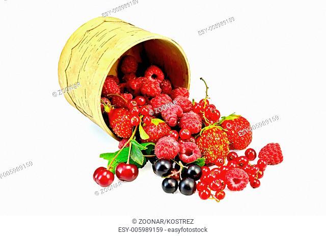 Berries different in a birch tueski