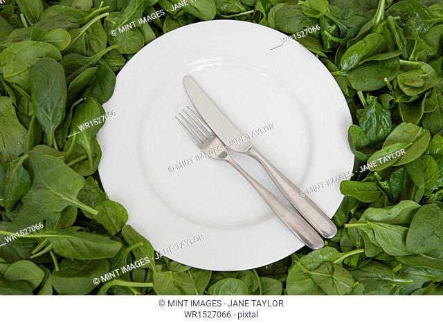 A white china plate with a knife and fork, resting on edible leaves. The concept of healthy eating