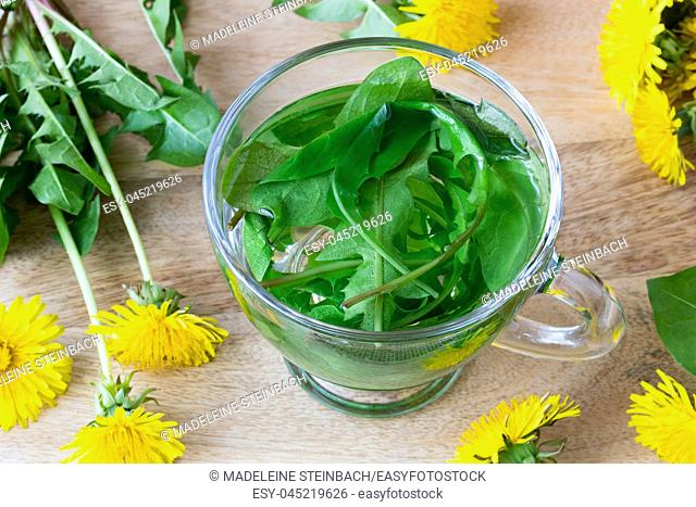 A cup of dandelion tea made from fresh leaves
