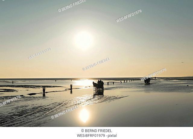Germany, Lower Saxony, North Sea,   Hamburg Wadden Sea National Park, Neuwerk, low tide, mudflat, mudflat carriage