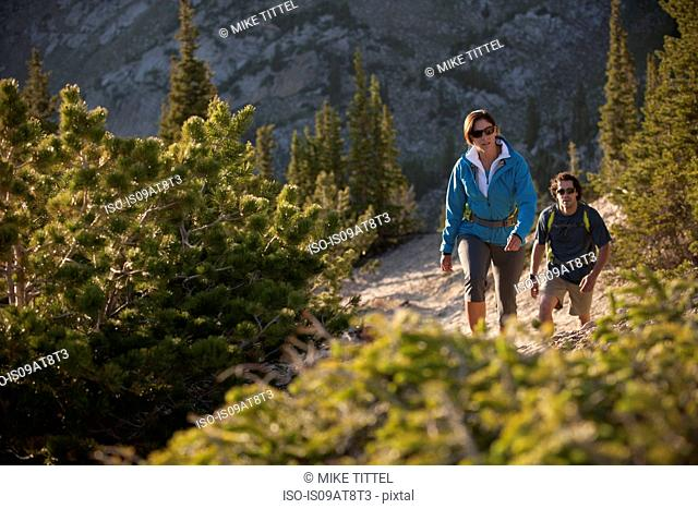 Hikers on Sunset Peak trail, Catherine's Pass, Wasatch Mountains, Utah, USA
