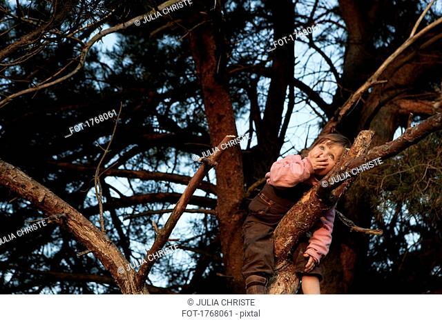 Cute girl climbing tree