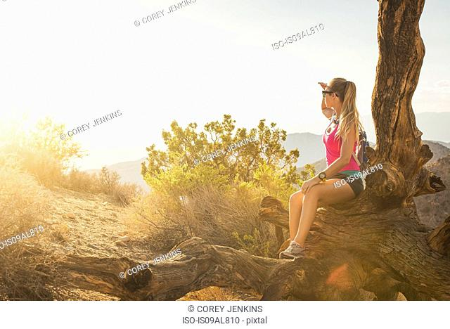 Woman taking break on mountain, Joshua Tree National Park, California, US