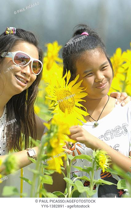 girls posing with sunflowers , sunflower fields of lopburi , central thailand