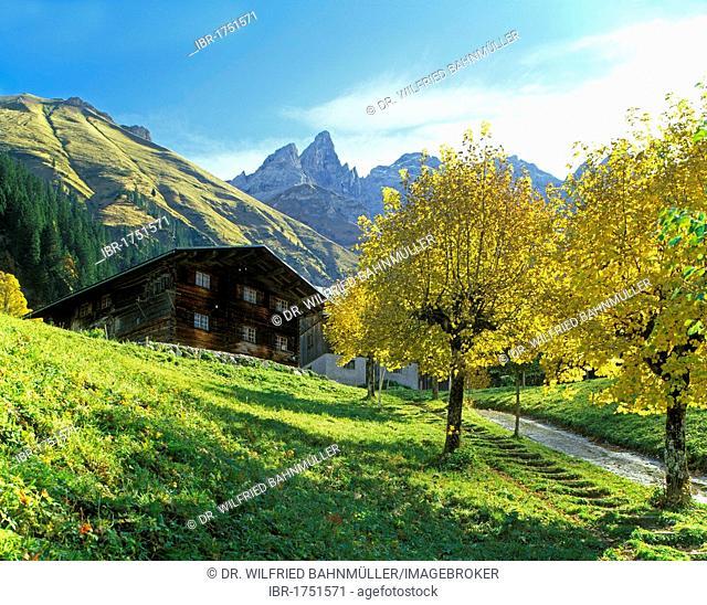 Mt. Maedelegabel, Trettachtal, Allgaeu, Bavarian swabia, Bavaria, Germany, Europe