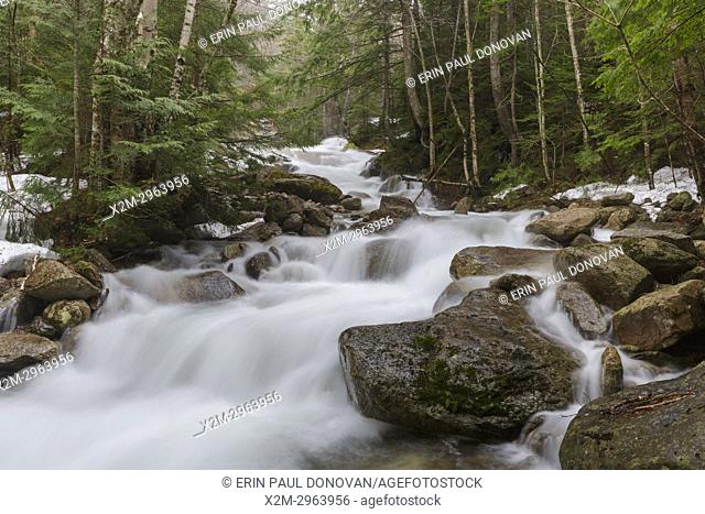 Cascades along Walker Brook in Franconia Notch State Park of the New Hampshire White Mountains during the spring months