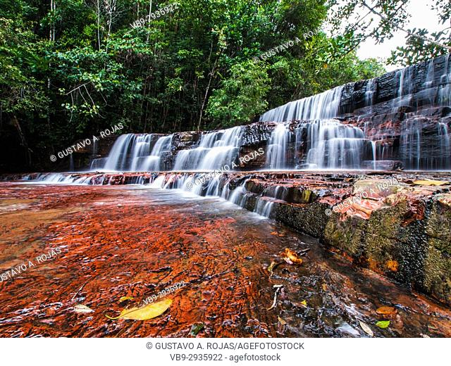 Quebrada de Jaspe, Bolívar, Gran Sabana, Venezuela, South America River, red Jaspis, water surface, Leaf, drives South America