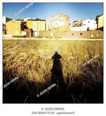Shadow in Galicia