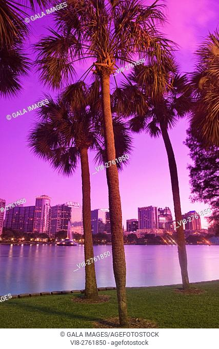PALM TREES DOWNTOWN SKYLINE LAKE EOLA PARK ORLANDO FLORIDA USA
