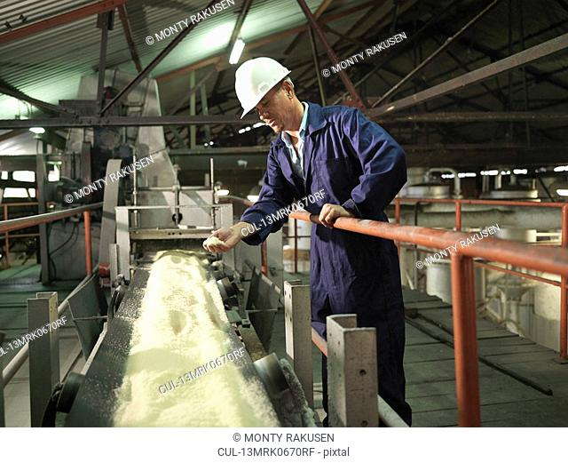 Factory Worker With Processed Sugar Cane