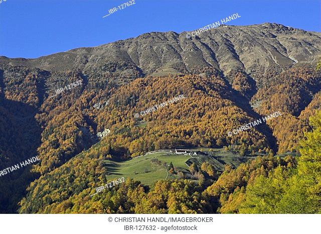 Kopflplatte (2319m), Tanas, Vinschgau, South Tyrol, Italy