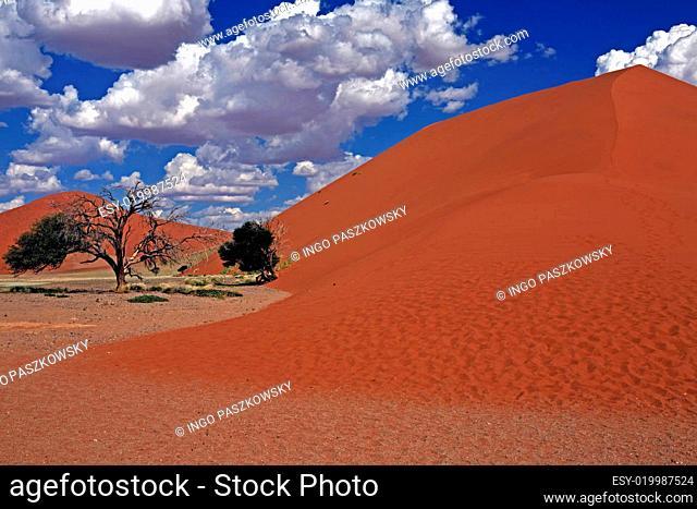 Dünenlandschaft im Namib Naukluft Park