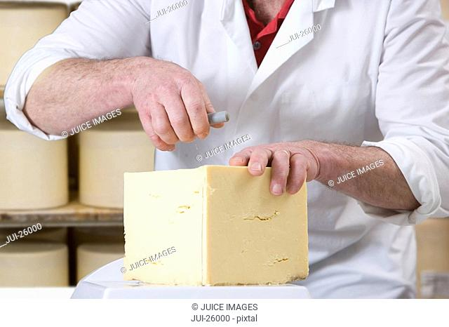 Close up of cheese maker cutting farmhouse cheddar with cheese wire