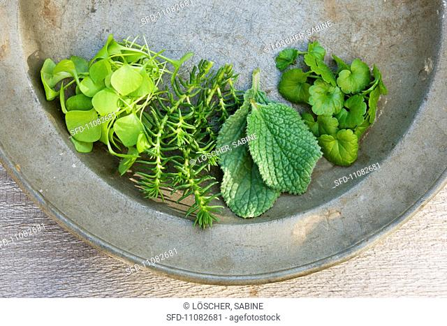 Fresh herbs on an old zinc plate