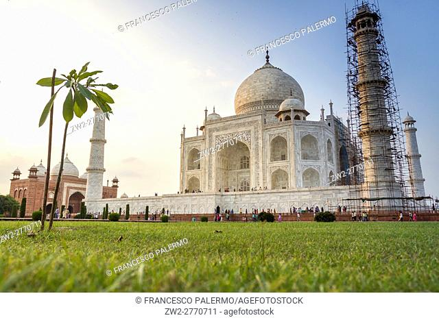 Taj Mahal in a green field. Agra, Uttar Pradesh. India