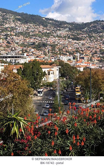 Funchal - view from Santa Catarina park - Madeira
