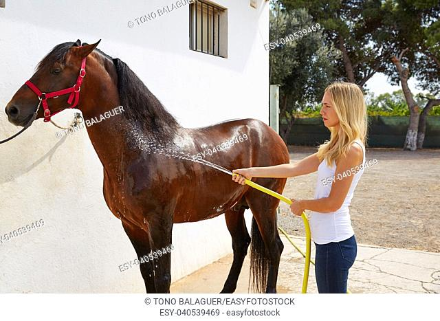 Blond girl cleaning brown horse with hose water on white wall