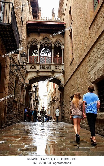 Carrer del Bisbe. Bisbe Irurita street. Gothic quarter. Barcelona. Catalonia. Spain