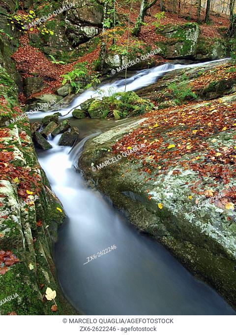Gualba stream. Autumn at Montseny Natural Park. Barcelona province, Catalonia, Spain
