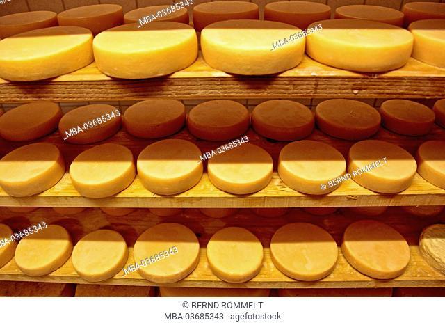 Germany, Bavaria, Allgäu, upper Allgäu, Allgäuer alps, Nagelfluhkette, cheese dairy, Waltners Alp