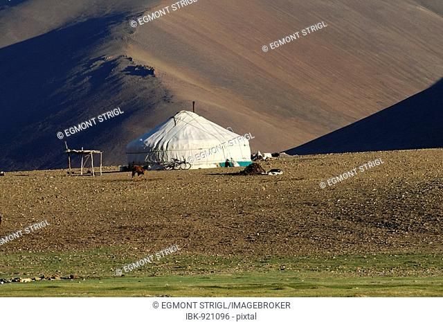 Yurt, ger, in the Mongolian Steppe, Altai, Mongolia, Asia