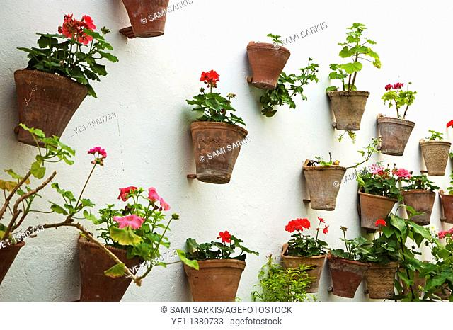 Terracotta flower pots decorating the walls of the old city, Cordoba, Andalusia, Spain