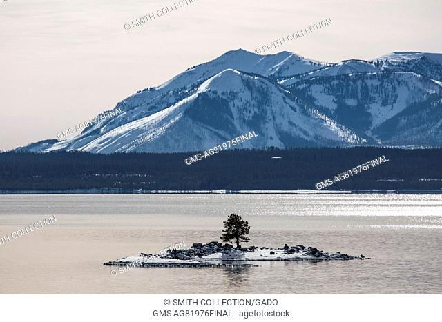 Carrington Island in Yellowstone Lake with Mt, December, 2015. Sheridan in the background, Yellowstone National Park, Wyoming