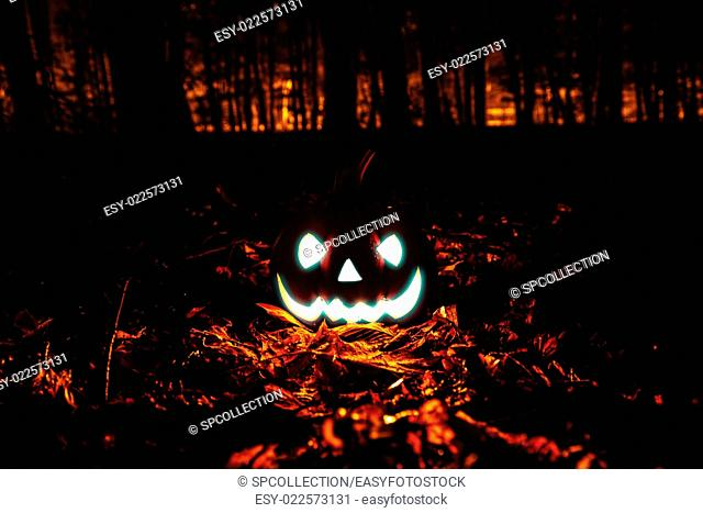 Halloween pumpkin in dark forest
