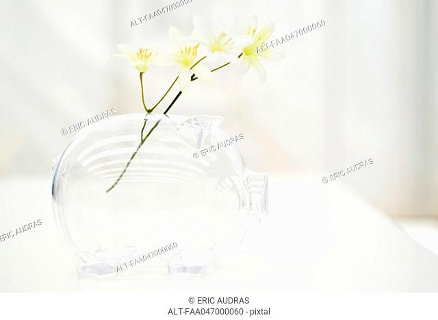 Flowers in piggy bank
