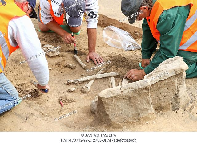 Excavation helpers excavate a skeleton at a grave with stone-aged headstone at an archaeological excavation site near Beuna, Germany, 12 July 2017