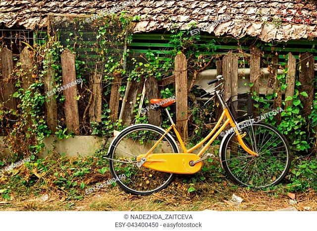 View on an orange bicycle near to wooden house and old broken wooden fence with curly plant. Chiang Mai, Thailand