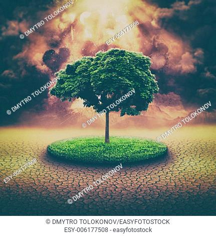 global disaster, abstract environmental backgrounds with explosion and alone tree