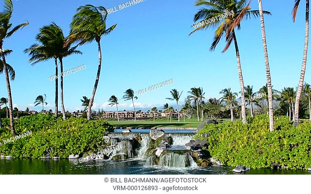 Waikoloa Hawaii Big Island beautiful water and palm trees with homes exclusive at Waikoloa Beach expensive exclusive
