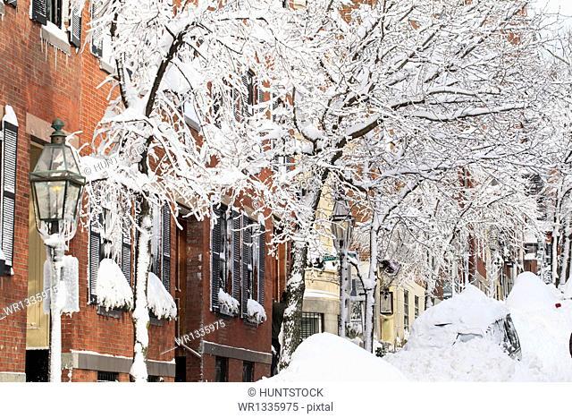 Snowbound auto on Pinckney Street after blizzard in Boston, Suffolk County, Massachusetts, USA