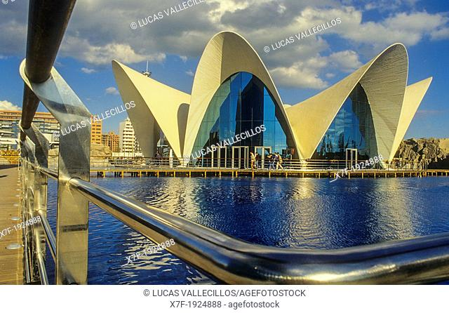 Oceanografic by Félix Candela, in City of Arts and Sciences by S  Calatrava  Valencia  Spain