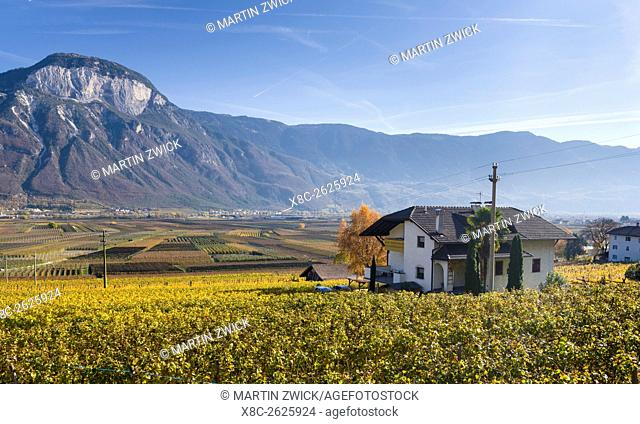 Fruit growing and viniculture in South Tyrol - Alto Adige. europe, central europe, italy, november