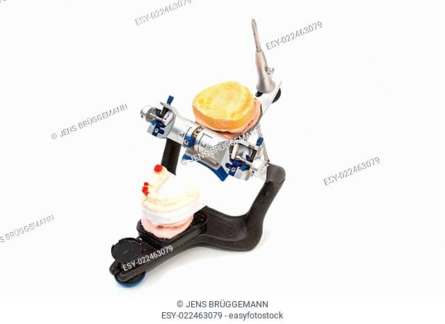 Zahnprothese in Artikulator