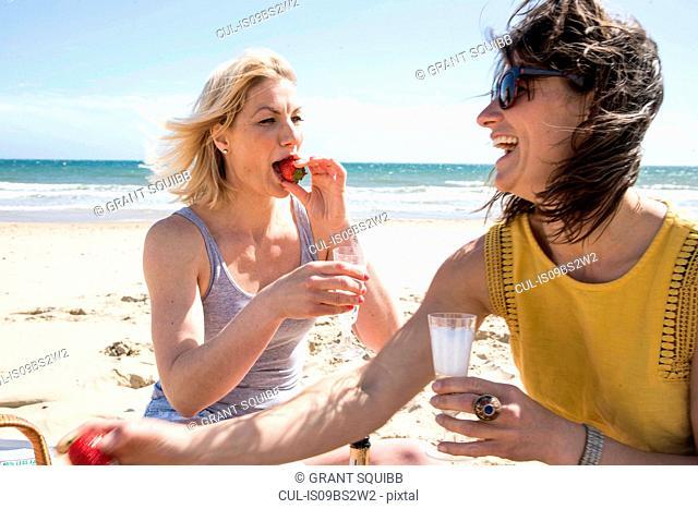 Sisters enjoying picnic on beach