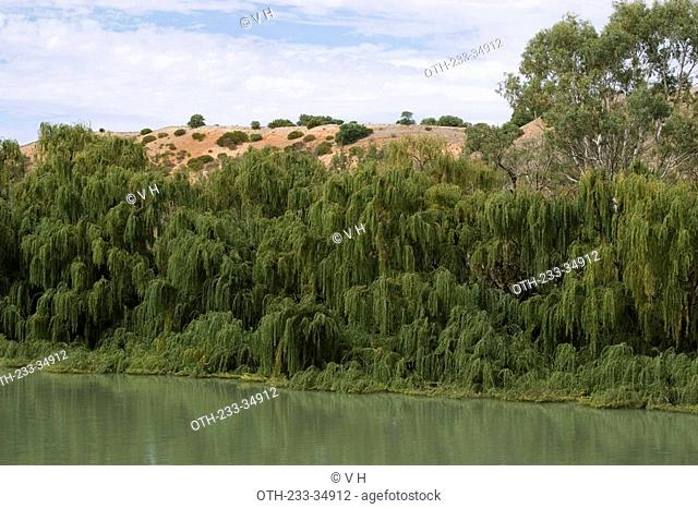 River Murray, Adelaide, South Australia