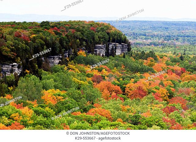 Deciduous forest from viewpoints along the Cup and Saucer Trail. Manitoulin Island, Ontario, Canada