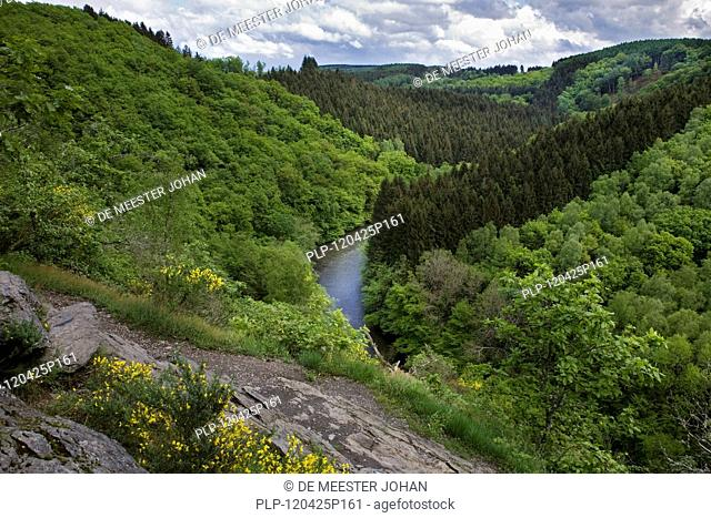 View over the river Ourthe at Nadrin, Belgian Ardennes, Belgium