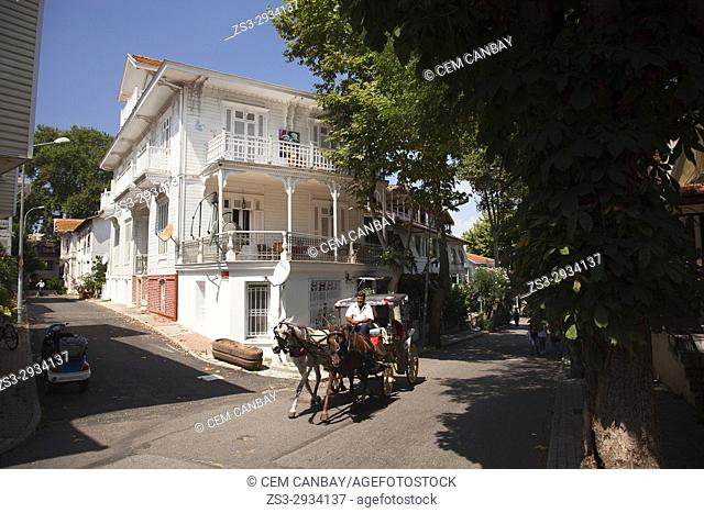 Two-horse cart in front of the traditional wooden houses in Buyukada-Prinkipos, the largest of the Prince Islands, Marmara Sea, Istanbul, Turkey, Europe