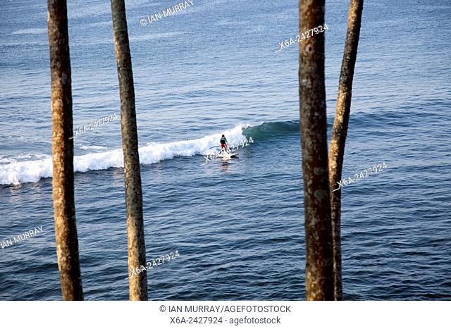 Man paddle board surfing on wave, Mirissa, Sri Lanka, Asia