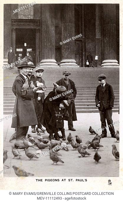 Feeding the Pigeons on steps of St. Paul's Cathedral, London