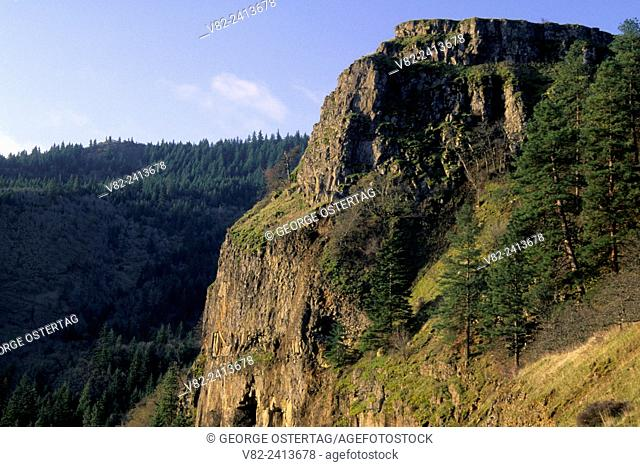 Basalt rim above Historic Columbia River Highway near McCall Point, Mayer State Park, Columbia River Gorge National Scenic Area, Oregon