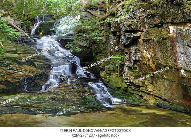 Tama Falls on Snyder Brook in Randolph, New Hampshire during the summer months. This waterfall is located along the Fallsway Trail and is part of the Snyder...