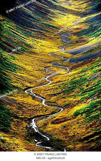 Tundra valley aerial, Wrangell-St. Elias National Park, Alaska