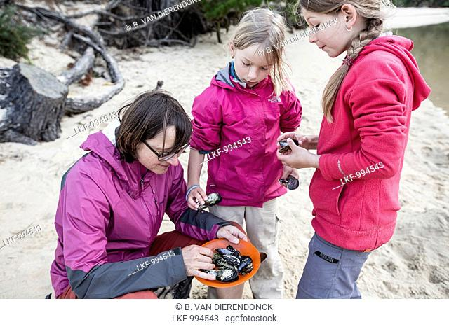 A woman and two girls collecting mussels, South Island, New Zealand